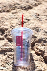 Earth Day rock cup