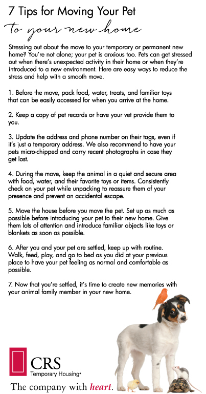 Moving-Pets-Tips